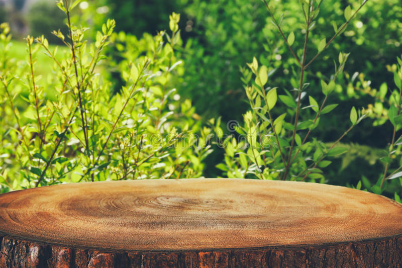 Image of wooden table in front green forest trees landscape background. for product display and presentation.  stock photography