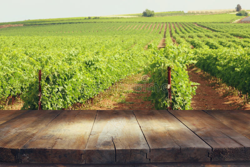 Image of wooden table in front of Vineyard landscape royalty free stock photos