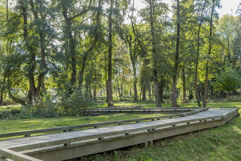 Image of a wooden walkway zigzag in the park. On a sunny autumn day in Voerendaal South Limburg in the Netherlands Holland royalty free stock photo