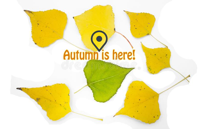 Image with yellow leaves, fallen from trees, GPS symbol and message Fall is here.  stock images