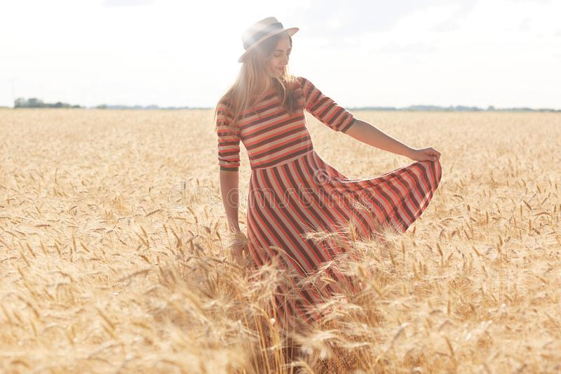 Image of young beautiful girl in fashionable striped dress and straw hat walking on wheat field on sunny summer day, enjoying stock images