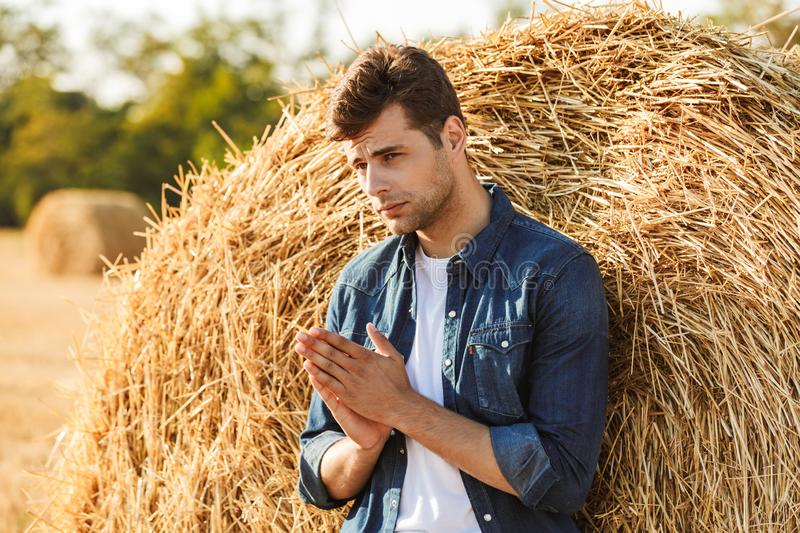 Image of young guy 30s walking through golden field, and standing near big haystack during sunny day. Image of young guy 30s walking through golden field and stock image