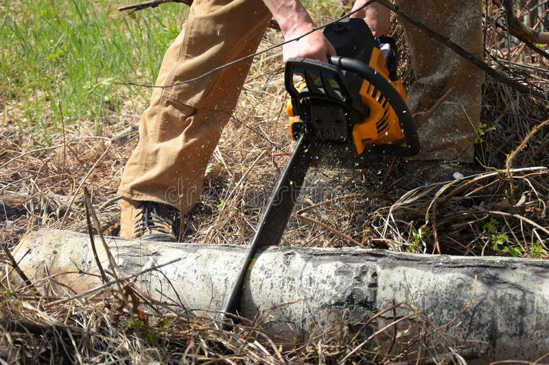 Working Chainsaw Close Up. An image of a young man cutting firewood with a yellow chainsaw stock photo