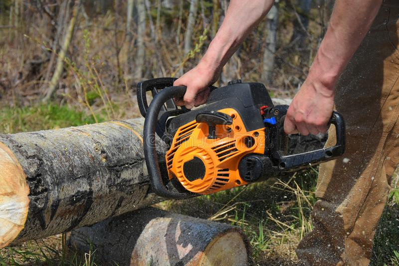 Working Chainsaw Close Up. An image of a young man cutting firewood with a yellow chainsaw stock image