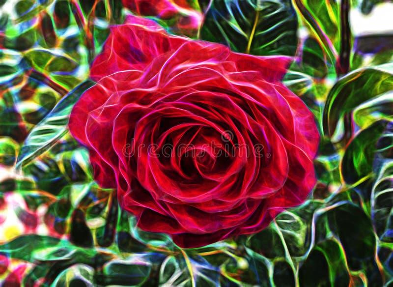 Imagem abstrata do fractal de uma rosa bonita ilustração stock