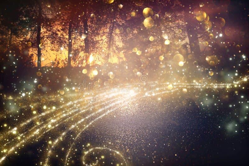 Imagem abstrata e mágica do voo do vaga-lume do brilho no conceito do conto de fadas da floresta da noite imagens de stock royalty free