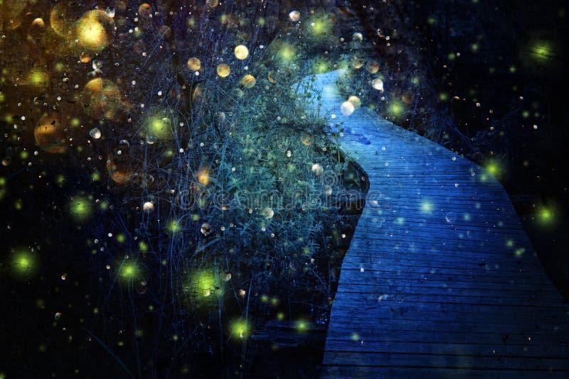 Imagem abstrata e m?gica do voo do vaga-lume no conceito do conto de fadas da floresta da noite ilustração stock