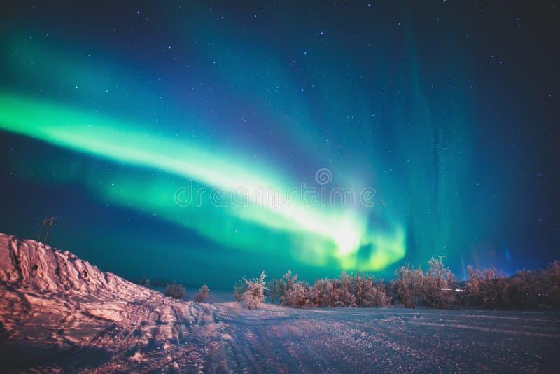 Imagem bonita de Aurora Borealis vibrante verde colorido maciça, igualmente conhecida como a aurora boreal, Suécia, Lapland fotografia de stock