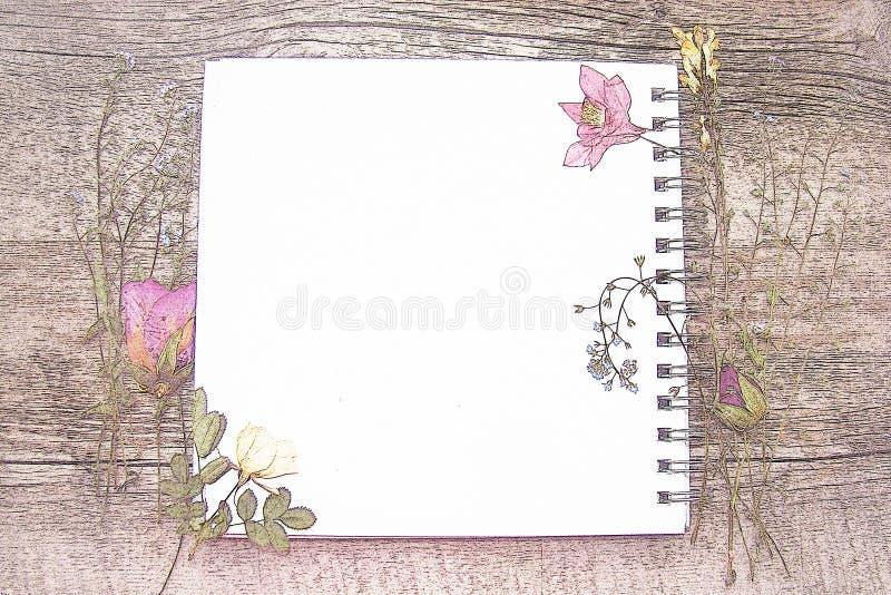 Imagem bonita de um caderno fotografia de stock royalty free