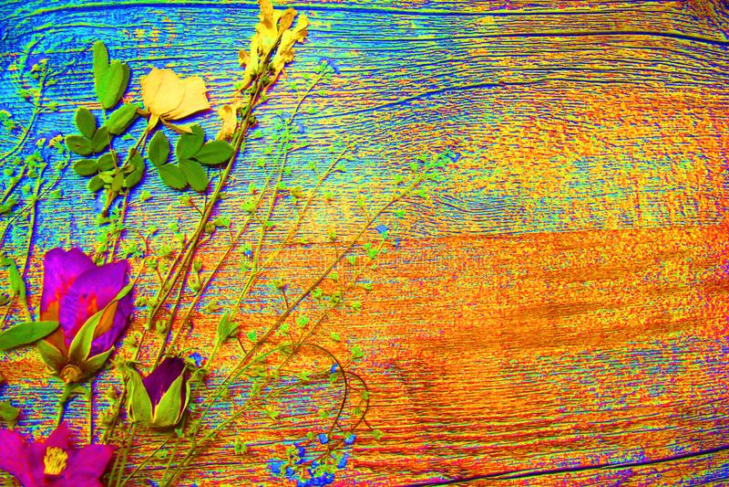 Imagem brilhante, psicadélico de um ramalhete das flores ilustração do vetor