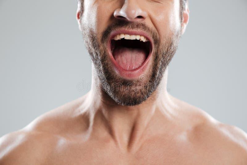 A imagem colhida de entusiasmado equipa a meia cara com ombros despidos imagens de stock royalty free