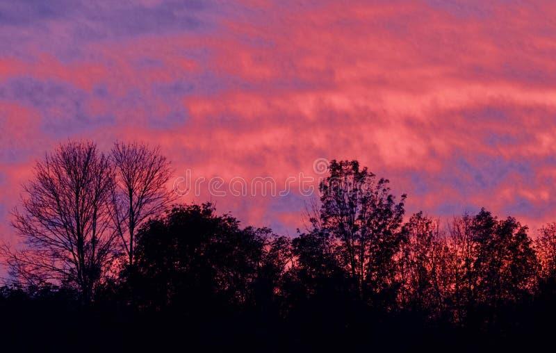 Imagem com um céu vívido bonito no por do sol foto de stock royalty free