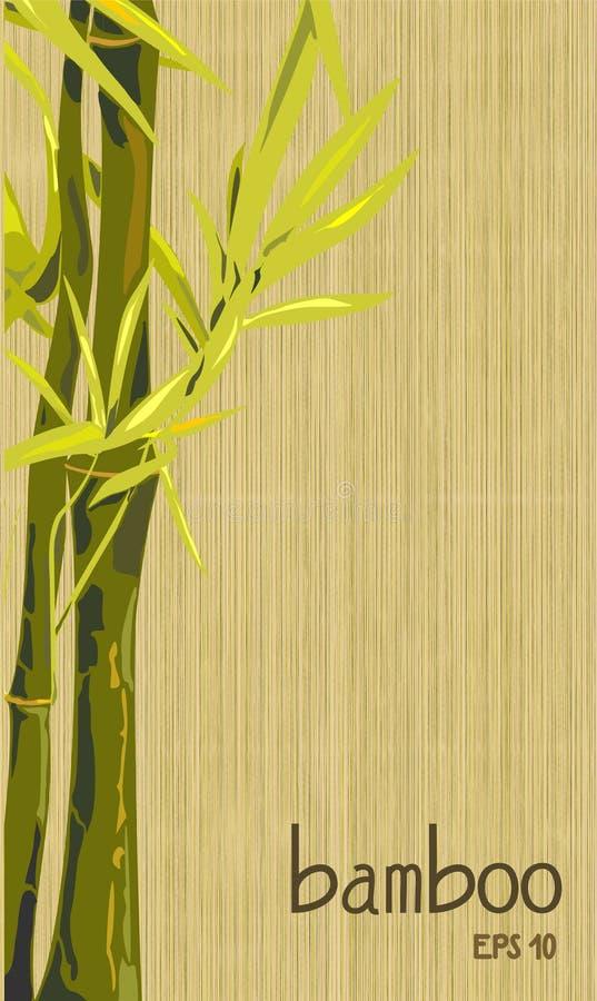 Imagem com um ramo de bambu, bambu fotos de stock