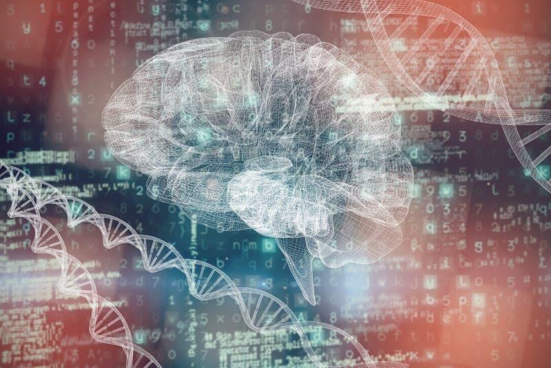 Imagem composta da imagem 3d do cérebro humano ilustração royalty free