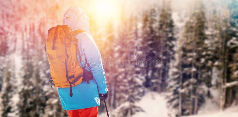 Imagem composta da opinião traseira o esquiador que guarda o polo de esqui fotos de stock
