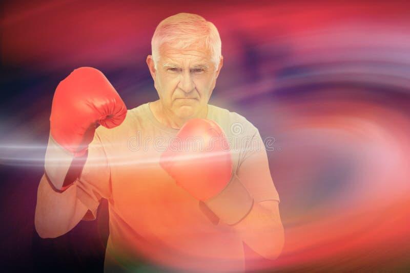 Imagem composta do retrato de um pugilista superior determinado foto de stock