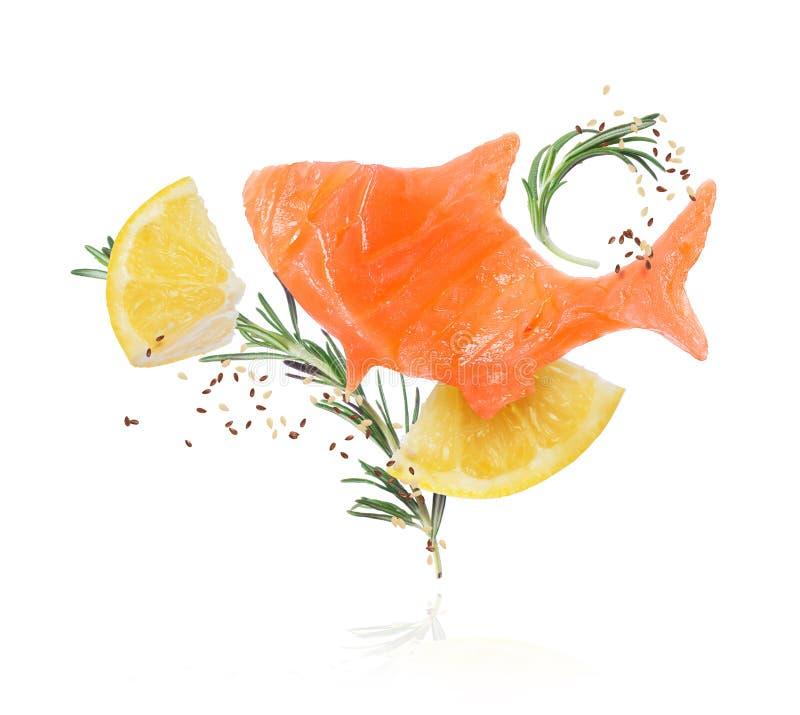 Imagem conceptual de uma fatia de peixes vermelhos com alecrins e partes de close-up do limão no fundo branco imagens de stock royalty free