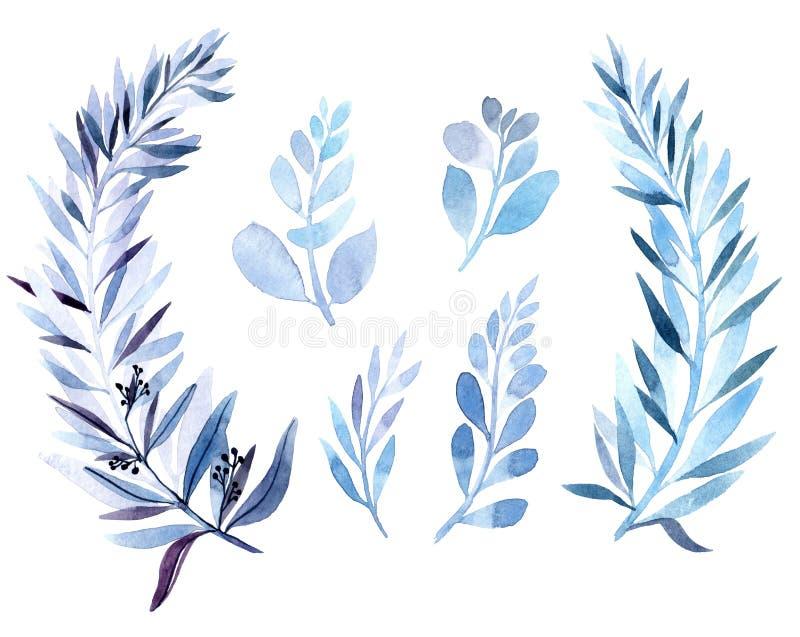imagem da aquarela de um ramo no azul As v?rias plantas s?o azuis ilustração royalty free