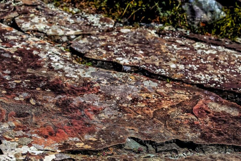 Imagem da caça antiga na parede do ocre da caverna Arte hist?rica archeology imagem de stock