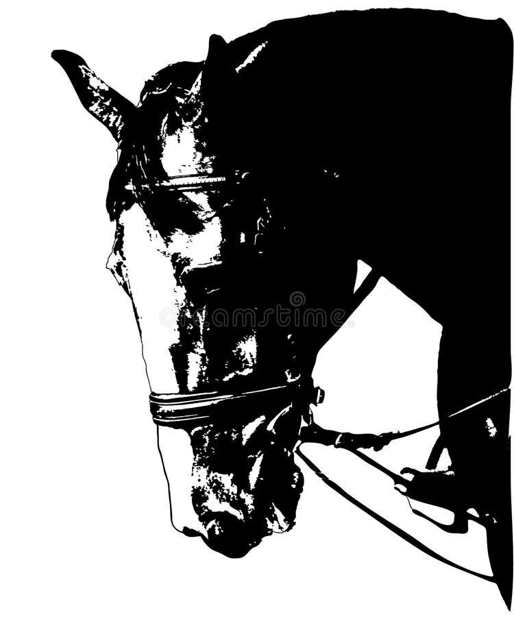 Imagem da cabeça de cavalo no freio ilustração do vetor