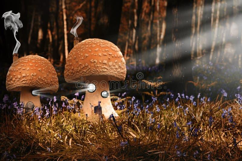 Imagem da fantasia de casas do toadstool nas madeiras ilustração royalty free