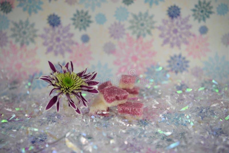 Imagem da fotografia do alimento do Natal com os doces ingleses antiquados do gelo de coco com fundo da flor e do floco de neve d fotos de stock royalty free