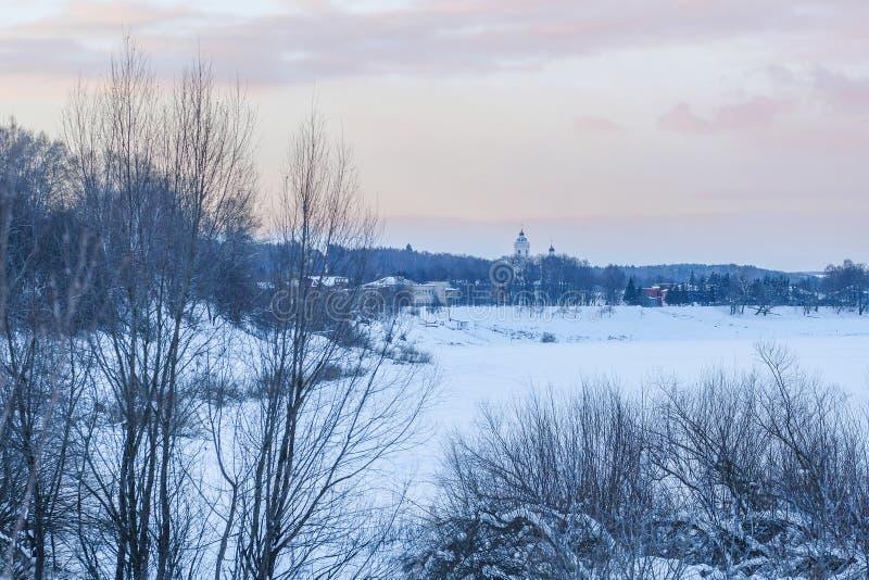 imagem da madeira do inverno fotografia de stock royalty free