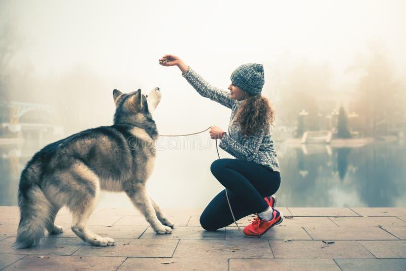 Imagem da moça com seu cão, malamute do Alasca, exterior foto de stock royalty free