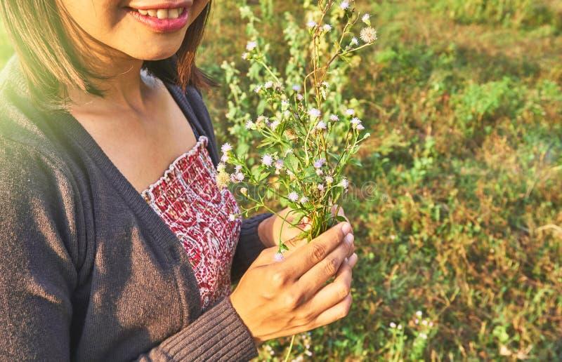 Imagem da mulher bonita asiática imagens de stock royalty free