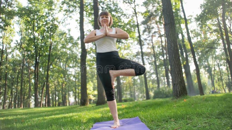 Imagem da mulher envelhecida m?dia de sorriso na roupa da aptid?o que faz exerc?cios do estic?o e da ioga Meditar e acontecimento foto de stock royalty free