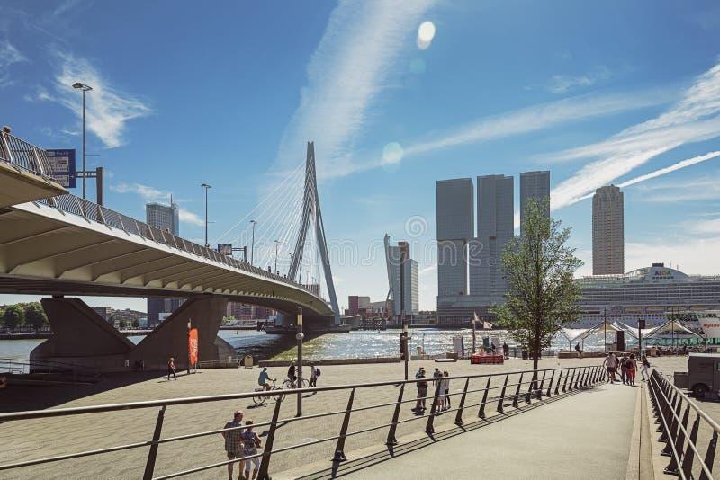 A imagem da ponte do Erasmus e para a construção o Rotterdam ao longo do Wilhelminakade tem o navio de cruzeiros de AIDA entrado foto de stock royalty free