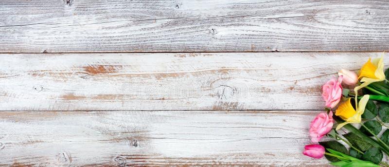 Imagem da vida do destilador da mola com conceito do feriado do dia e da Páscoa de mães no fundo rústico branco com uma variedade imagens de stock