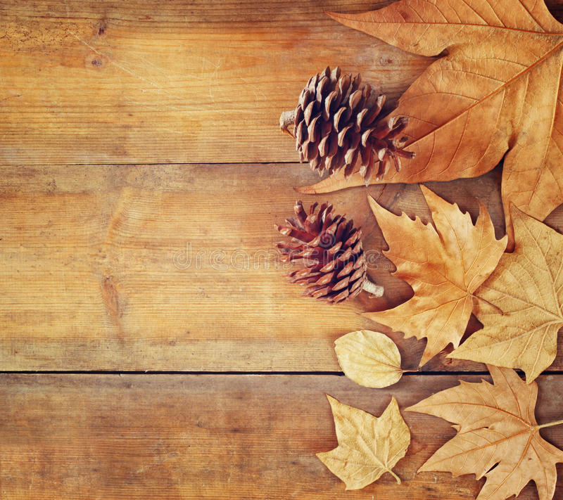 Imagem da vista superior das folhas de outono e dos cones do pinho sobre o fundo textured de madeira fotografia de stock royalty free