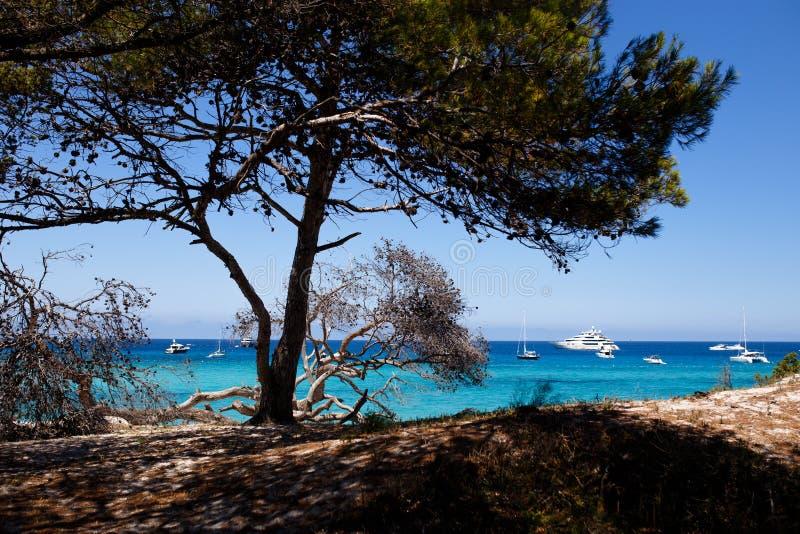 Imagem de Córsega, França, fundo do seascape Vista horizontal imagens de stock