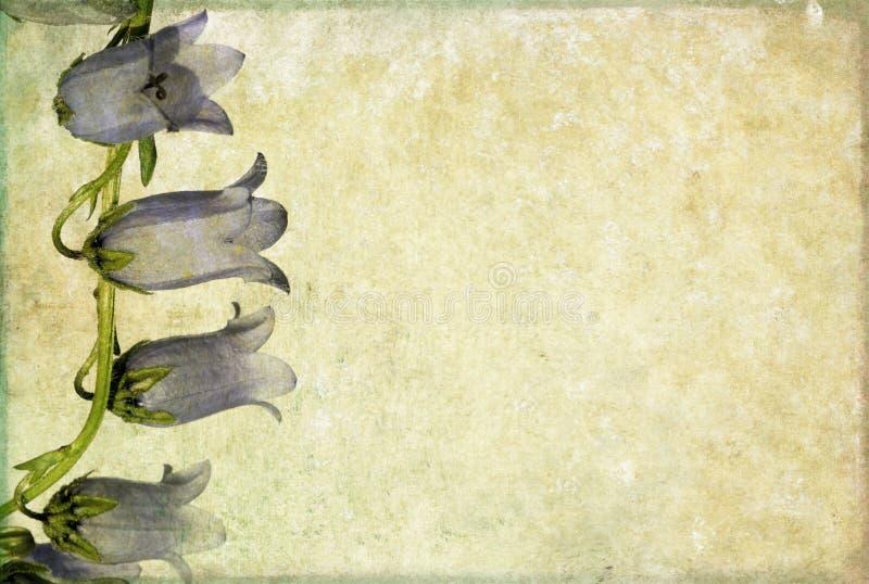 Imagem de fundo com elementos florais ilustração do vetor