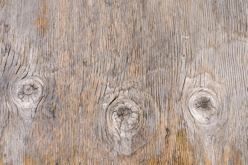Imagem de fundo Foto natural da textura da placa de madeira fotos de stock royalty free