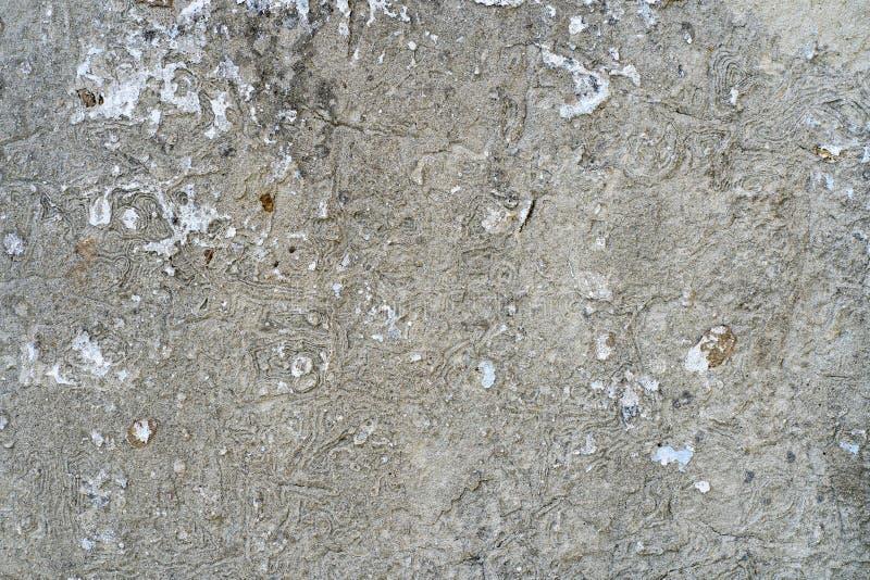 Imagem de fundo. Textura de uma parede de betão velha foto de stock royalty free