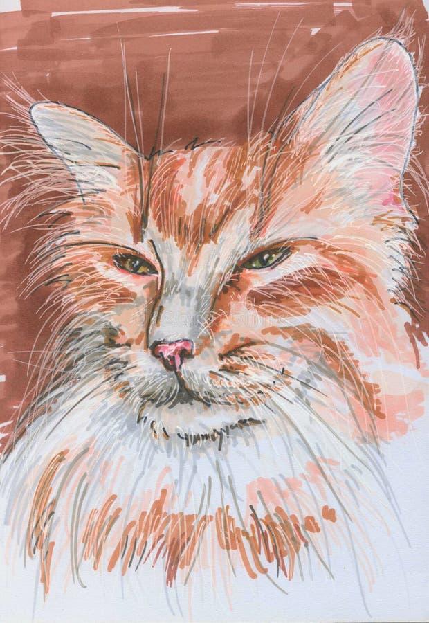 Imagem de gato vermelho fotografia de stock