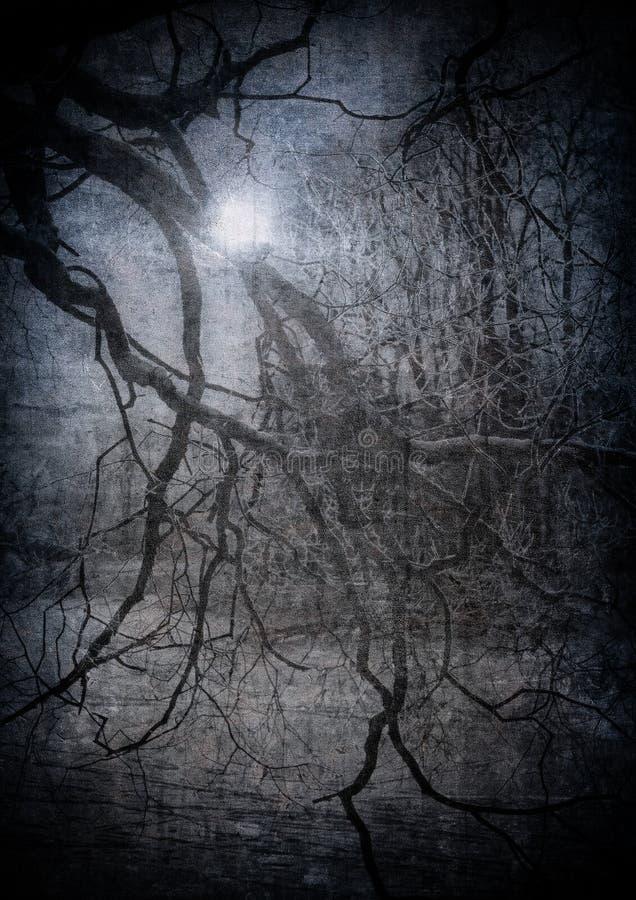 Imagem de Grunge da floresta escura, fundo de Halloween