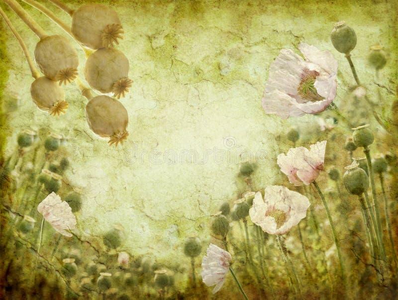 Imagem de Grunge das papoilas ilustração stock
