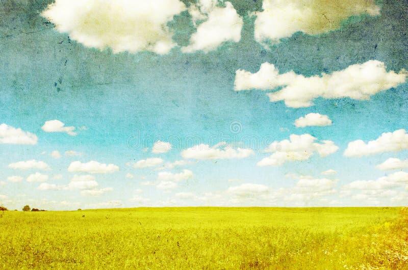 Imagem de Grunge do campo verde ilustração royalty free