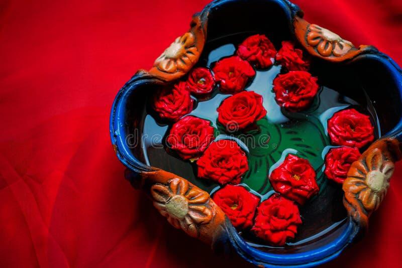 Imagem de rosa vermelha orgânica num pote cheio de água pura fotos de stock royalty free