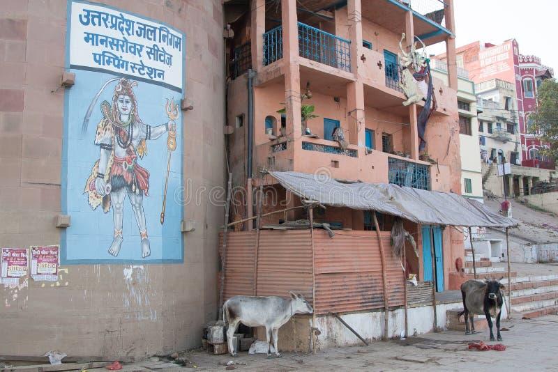 Imagem de Shiva no rio santamente de Ganga imagens de stock royalty free