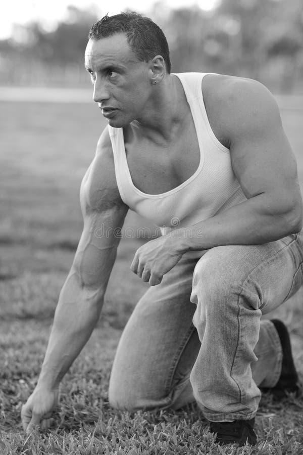 Imagem de um bodybuilder imagem de stock