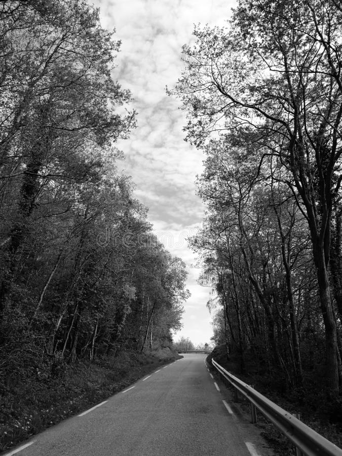Imagem de uma estrada asfaltada com as árvores ao longo dos lados em preto e branco fotografia de stock royalty free