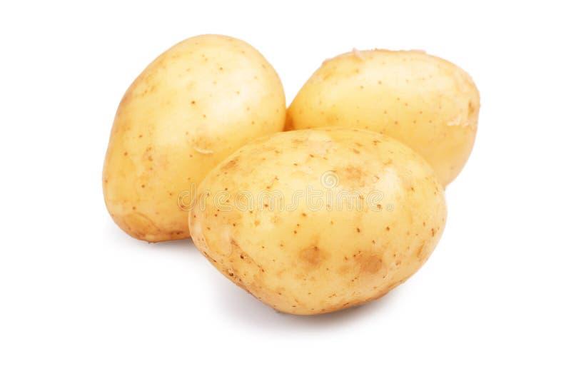 Imagem do close-up das batatas novas cruas, orgânicas e frescas, isoladas em um fundo branco Três luz dura - batatas marrons imagens de stock royalty free