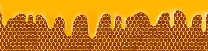 imagem do close up de fluxo do mel ilustração do vetor