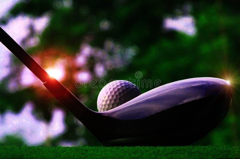 Imagem do close-up de uma bola de golfe branca na parte superior em um gramado verde em um campo bonito com luz do sol da noite fotografia de stock