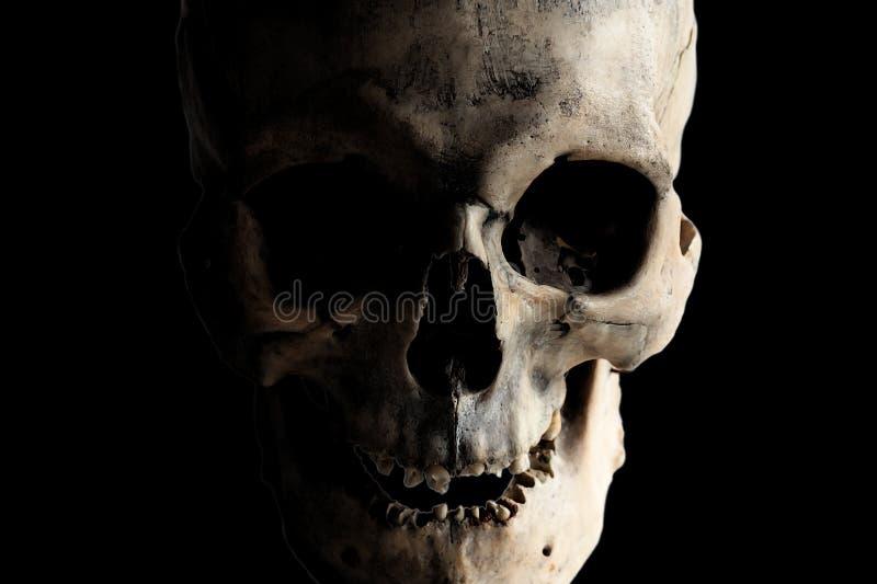 Imagem do contraste de um crânio humano real em um fundo escuro Isolado no preto foto de stock royalty free