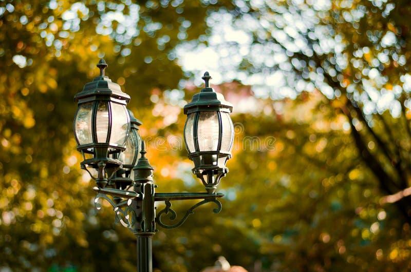 Imagem do estilo do vintage com a lâmpada de rua velha no parque foto de stock